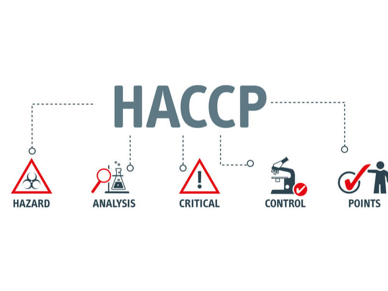 food safety haccp